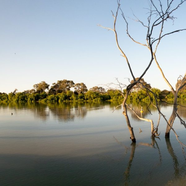 The mighty and beautiful Murray River at sunset