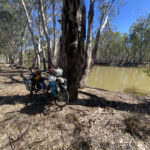The River Track runs right along the Murray River for much of the track's length